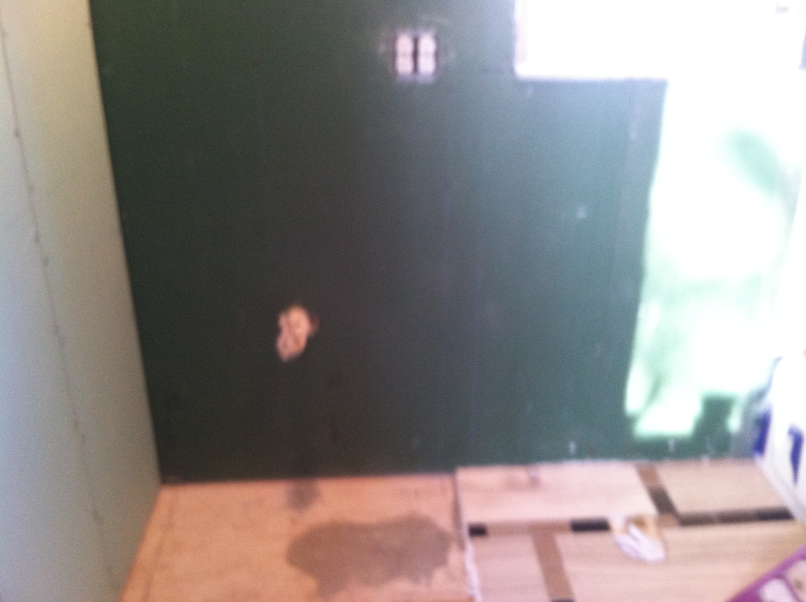 Bathroom Tile And Stone Work Homeless Turtle Sanctuary - Green board in bathroom